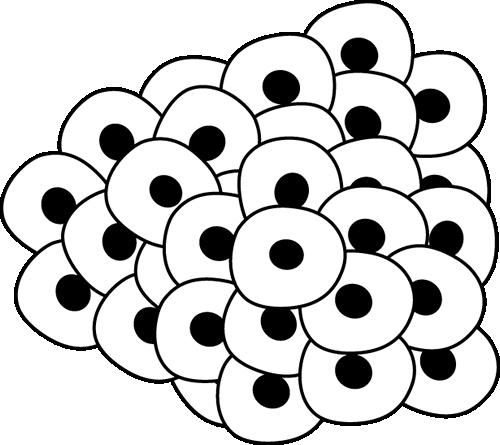 500x445 Frog Eggs Clip Art Image Clipart Panda