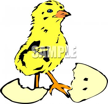 Egg Clipart Pictures