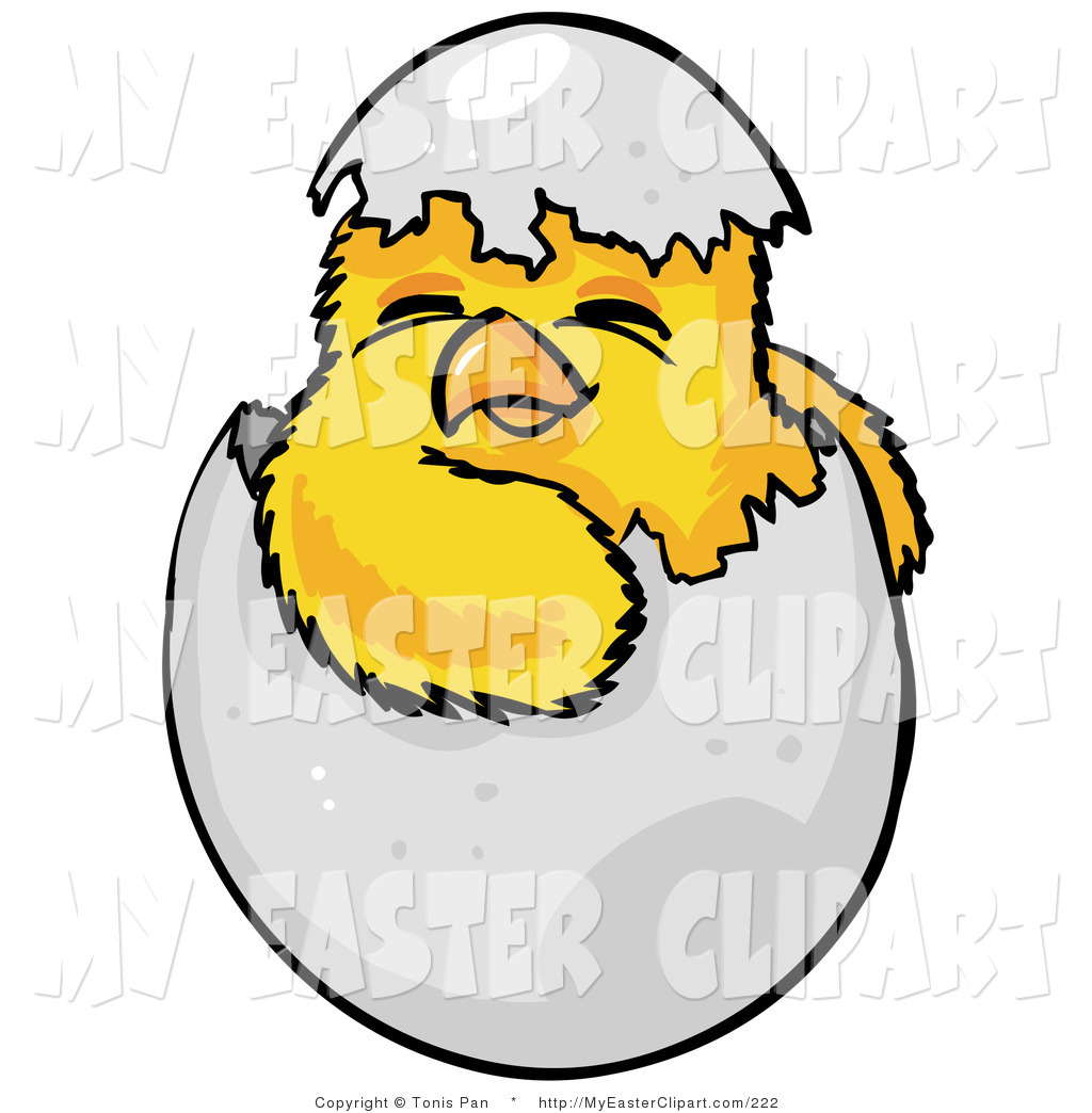 1024x1044 Cliprt Cute Baby Yellow Chick Hatchling, Hatching Out