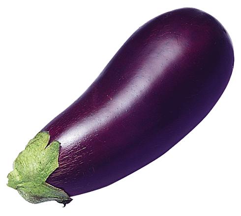 490x438 Eggplant Images