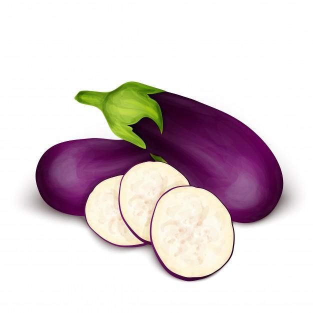626x626 Eggplant Aubergine Isolated Vector Premium Download