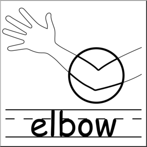 304x304 Clip Art Parts Of The Body Elbow Bw I Abcteach