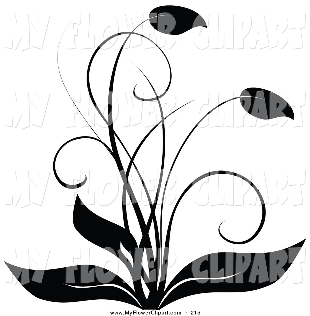 1024x1044 Clip Art Of A Elegant Black And White Flourish Flowering Plant
