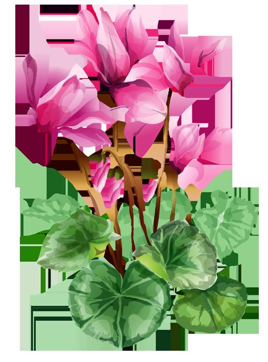 525x707 Summer Flowers Clip Art