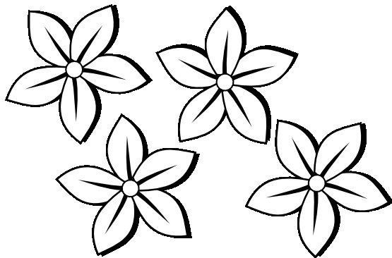 555x366 Clipart Flowers Black And White Flowers