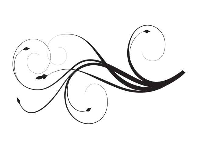 650x488 White Elegant Lines Clipart