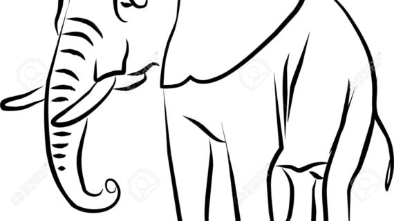 570x320 Black And White Elephant Drawing Black And White Elephant Drawing