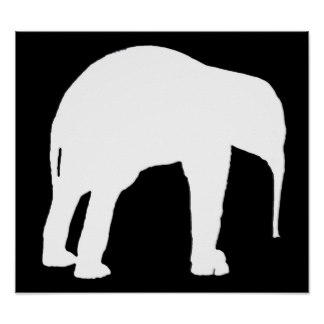 324x324 Black And White Elephant Posters Zazzle