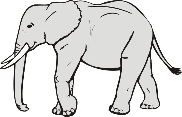 622x400 Elephant Clipart Black And White Letters Format
