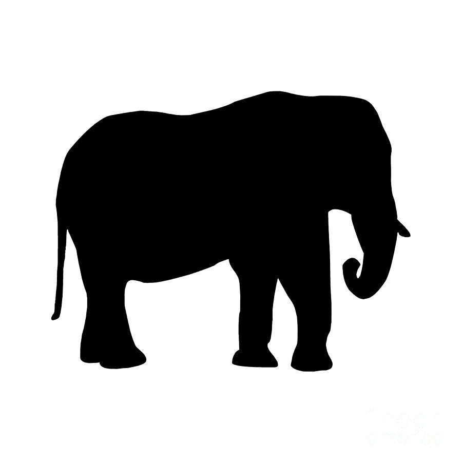 900x900 Elephant In Black And White Digital Art By Jackie Farnsworth
