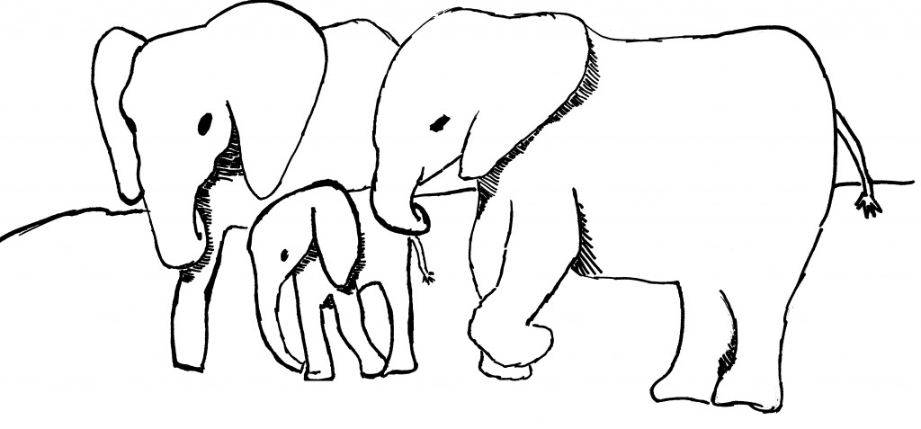1024x477 Elephant Black And White Baby Elephant Outline Clip Art