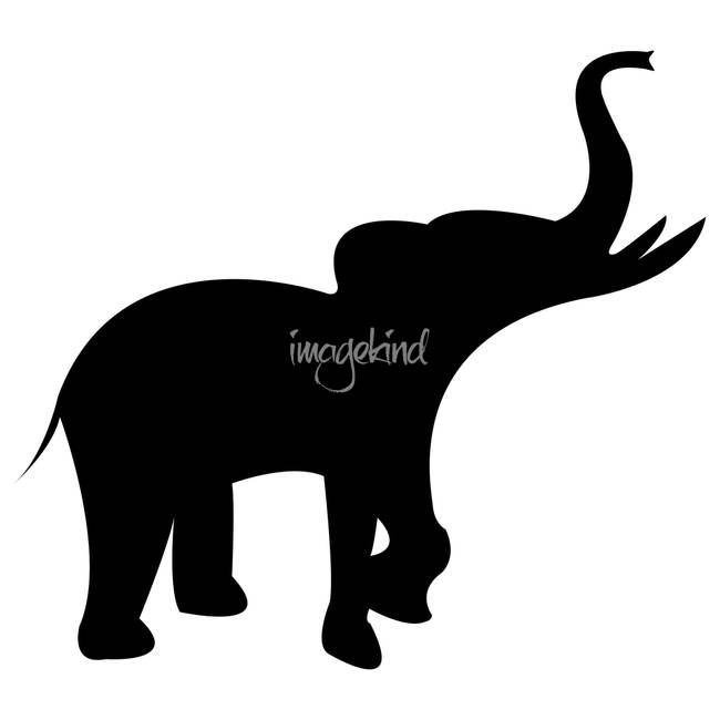 650x650 Stunning Black And White Elephant Artwork For Sale On Fine Art