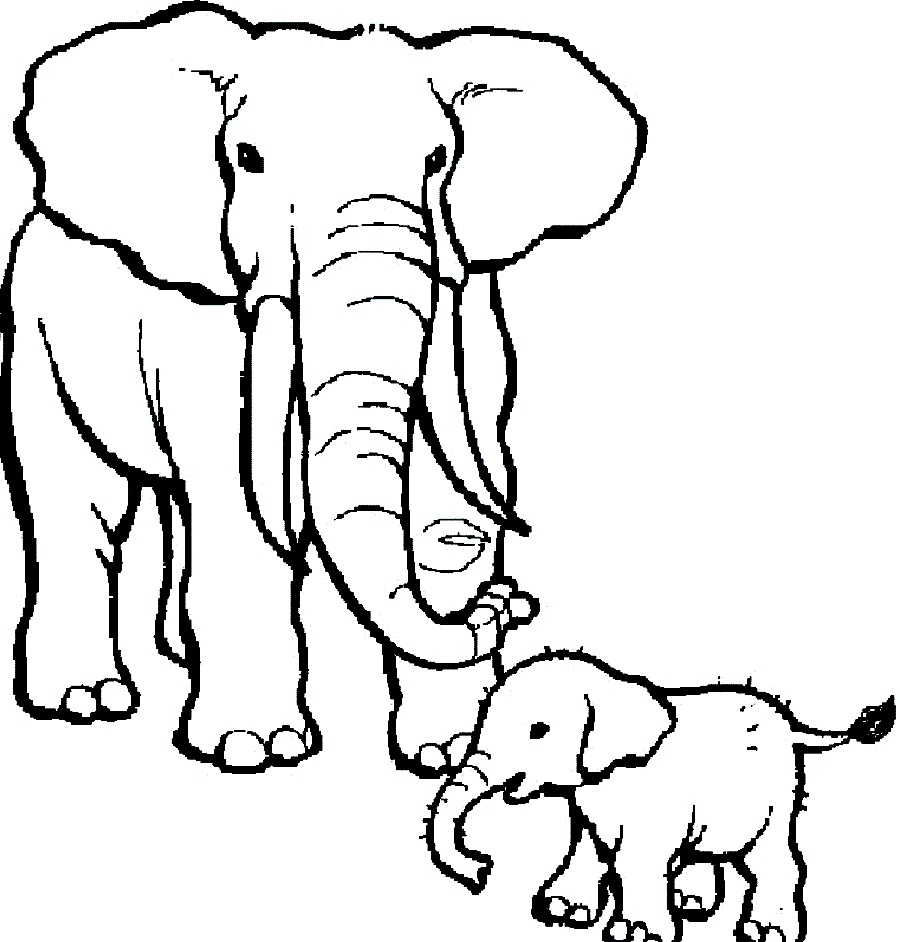 900x942 Circus Elephant Coloring Pages Download Big Elephant With Two