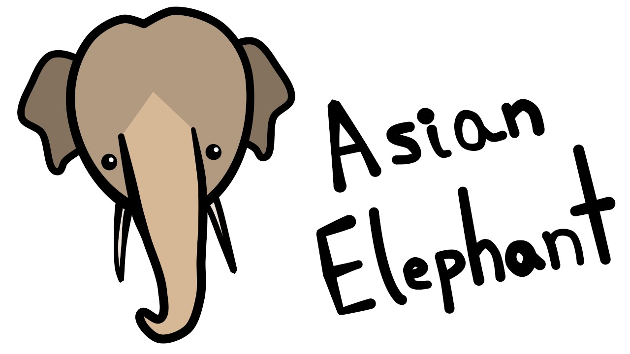 1280x720 Cute And Quick 2.0 How To Draw An Asian Elephant