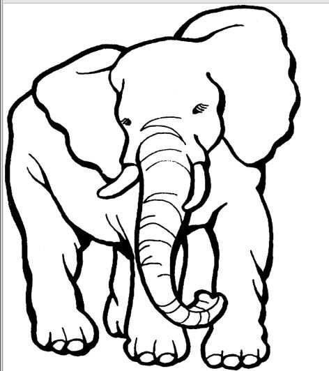 Elephant Cartoon Outline