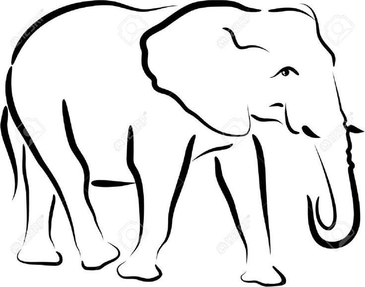 736x579 Drawn Elephant Outline