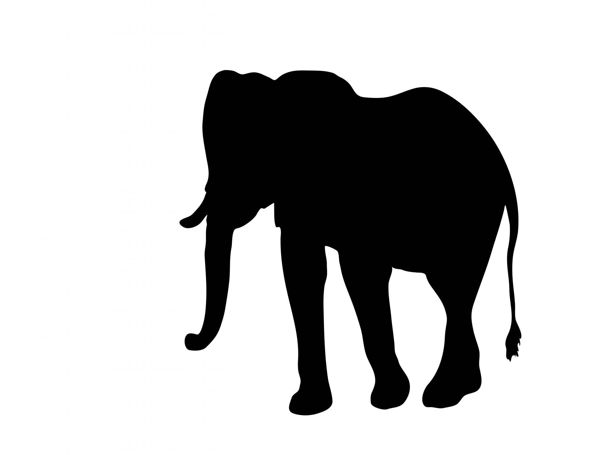 1920x1472 Elephant Clipart Silhouette Free Stock Photo