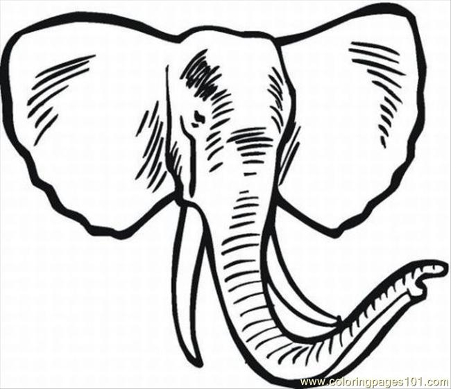 650x561 Elephant Coloring Pages 6 Lrg Coloring Page