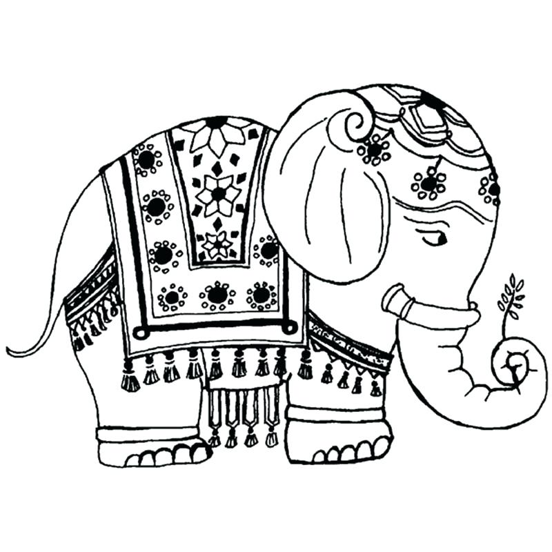 800x800 Elephant Coloring Pages Images Color Mind Best On Thaypiniphone