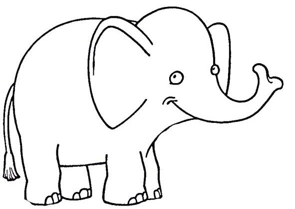 591x420 33 Best Elephant Coloring Pages Images Kindergarten