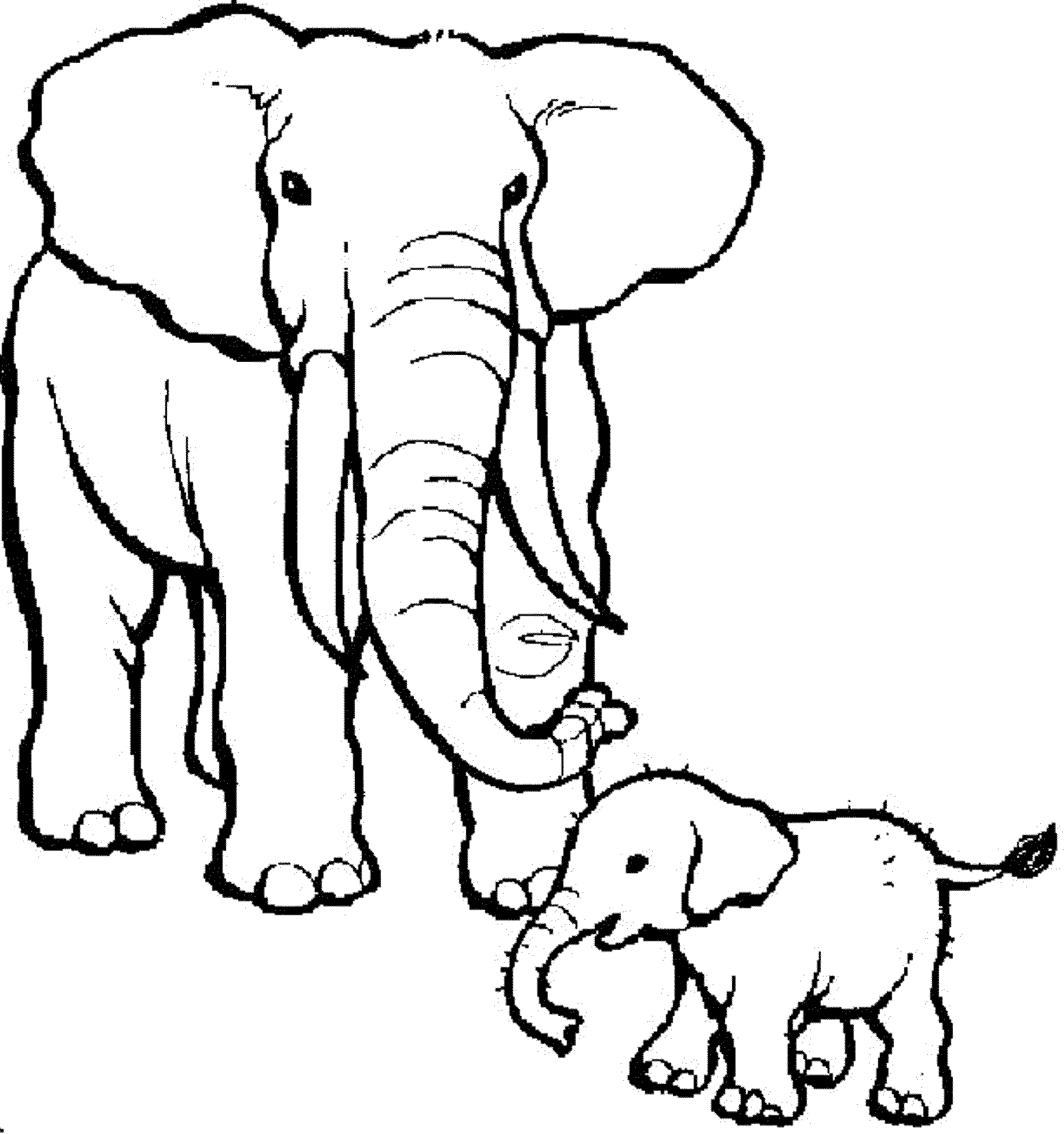 2000x2131 Smiling Elephant Printable Coloring Pages Mother And Baby Page