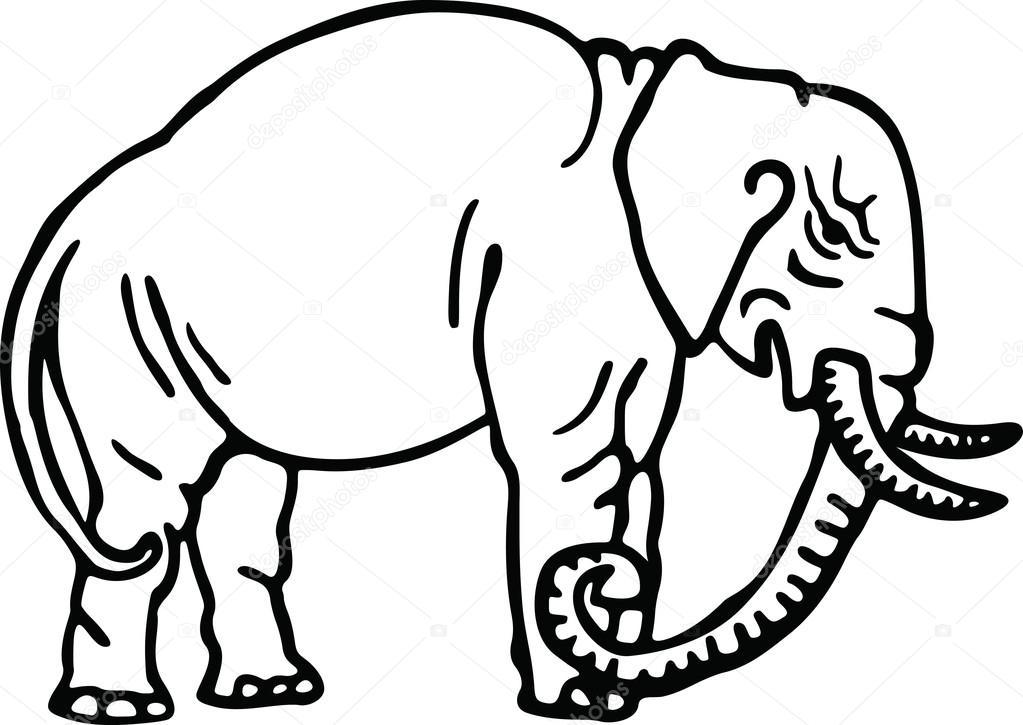 1023x725 Drawing Of A Wild Elephant Stock Vector Prawny
