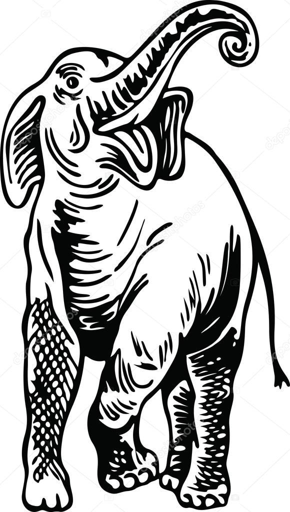 580x1024 Drawing Of A Wild Elephant Stock Vector Prawny