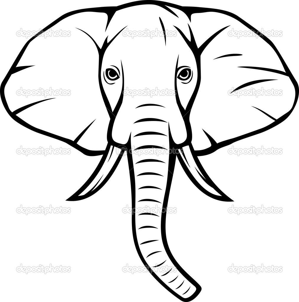 1013x1024 Elephant Face Drawing Draw Elephant Face