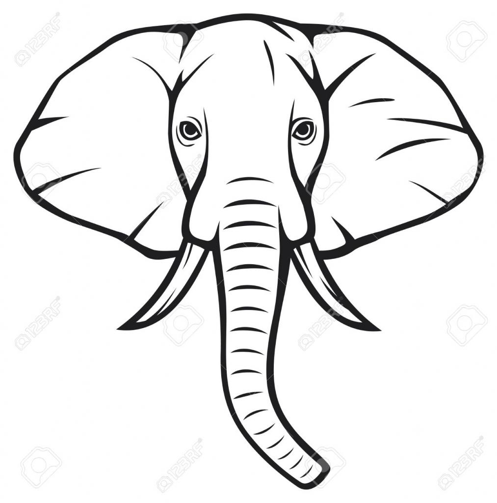 1013x1024 Elephant Head Drawing