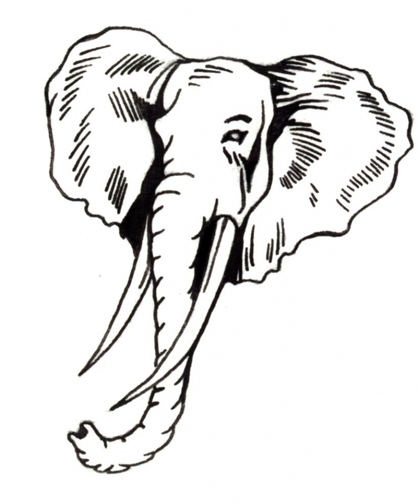 849x1024 A Drawing Of An Elephant Drawing Of Elephant Clipart Best