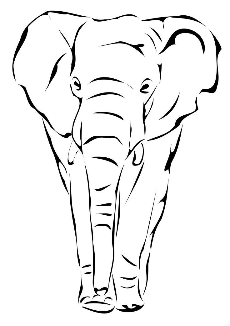 736x1040 Best Elephant Drawings Ideas Easy Elephant