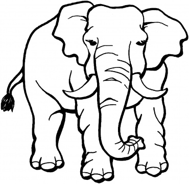 370x360 Free Printable Elephant Coloring Pages For Kids