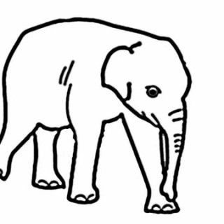 320x320 Tag For Elephant Easy Drawing Tag For Elephant Easy Drawing