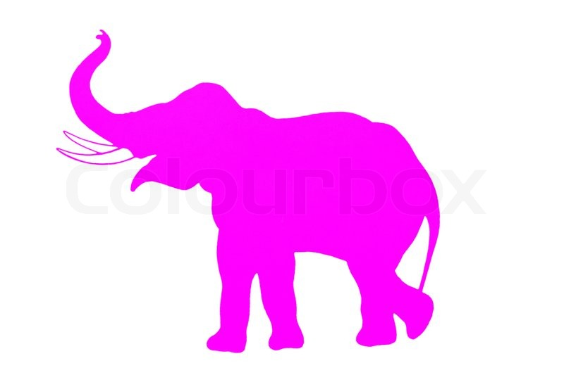 800x533 Elephant. Pink Silhouette. Stock Photo Colourbox