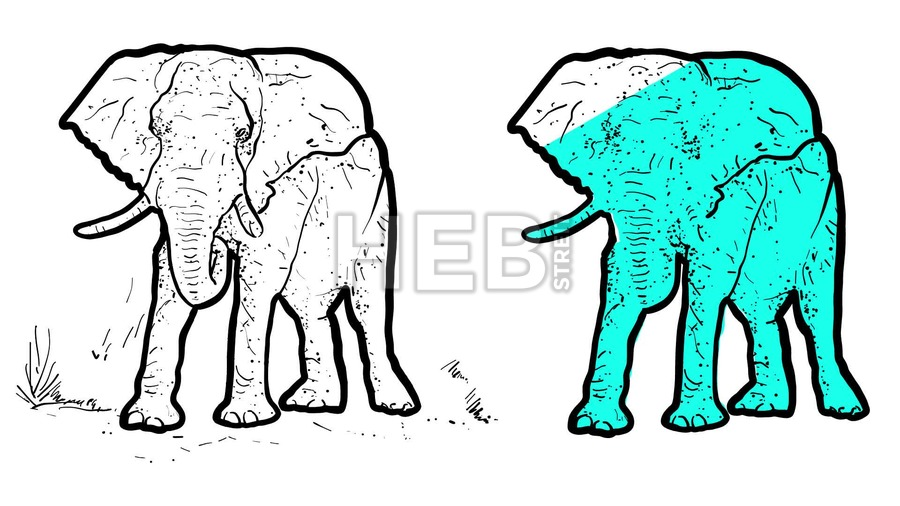 900x506 Elephant Outline Animated Illustration Hebstreits Sketches