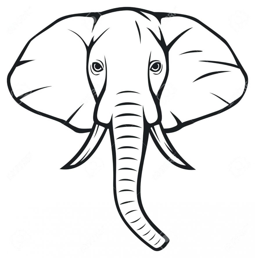 878x887 Elephant Outline Template Pa 138 Interesting Clipart Elephant