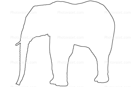 418x279 Elephant Outline, Line Drawing, Baby, Shape Images, Photography