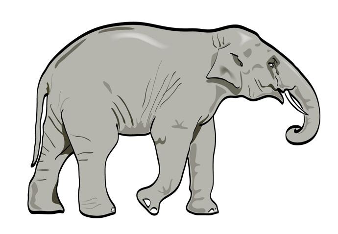 690x478 Elephant Clip Art Vector Cliparts