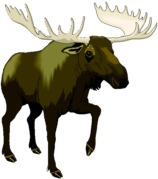 516x584 Elk Clip Art Moose Dromffl Top Image