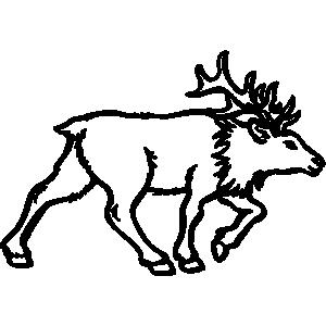 300x300 Top 79 Elk Clipart