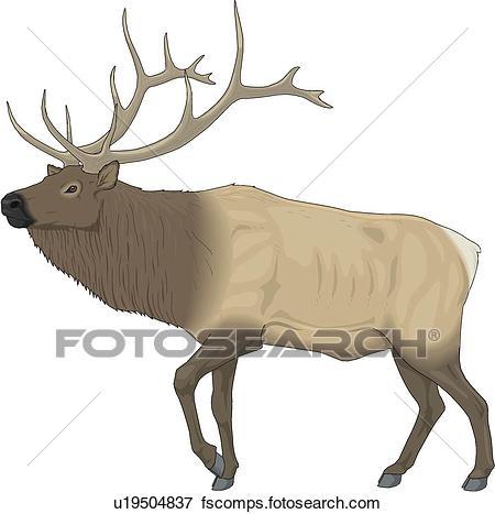 450x467 Clip Art Of Elk U19504837