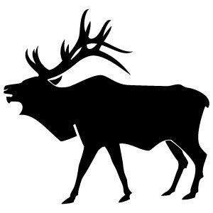 300x300 Elk Black and White Clipart