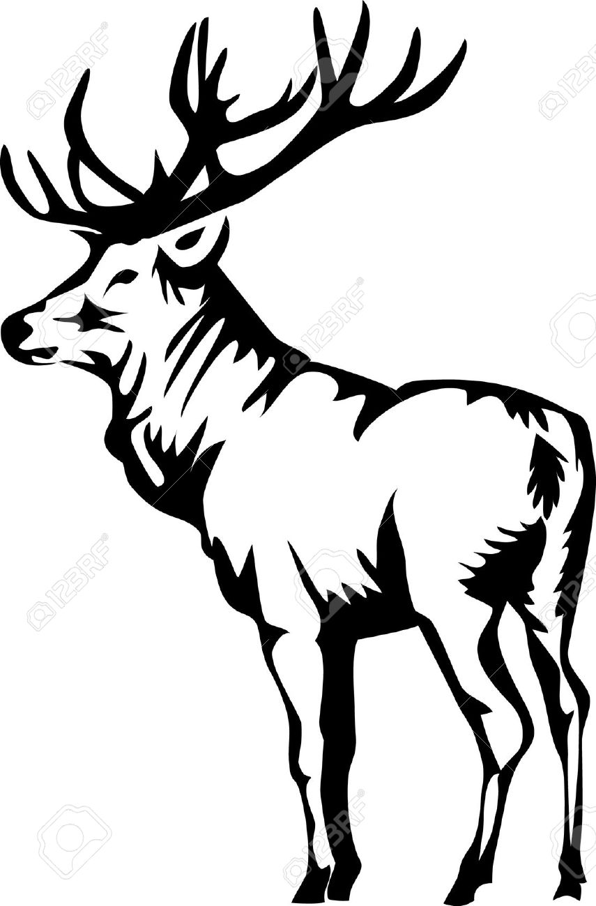 855x1300 Elk clipart black and white