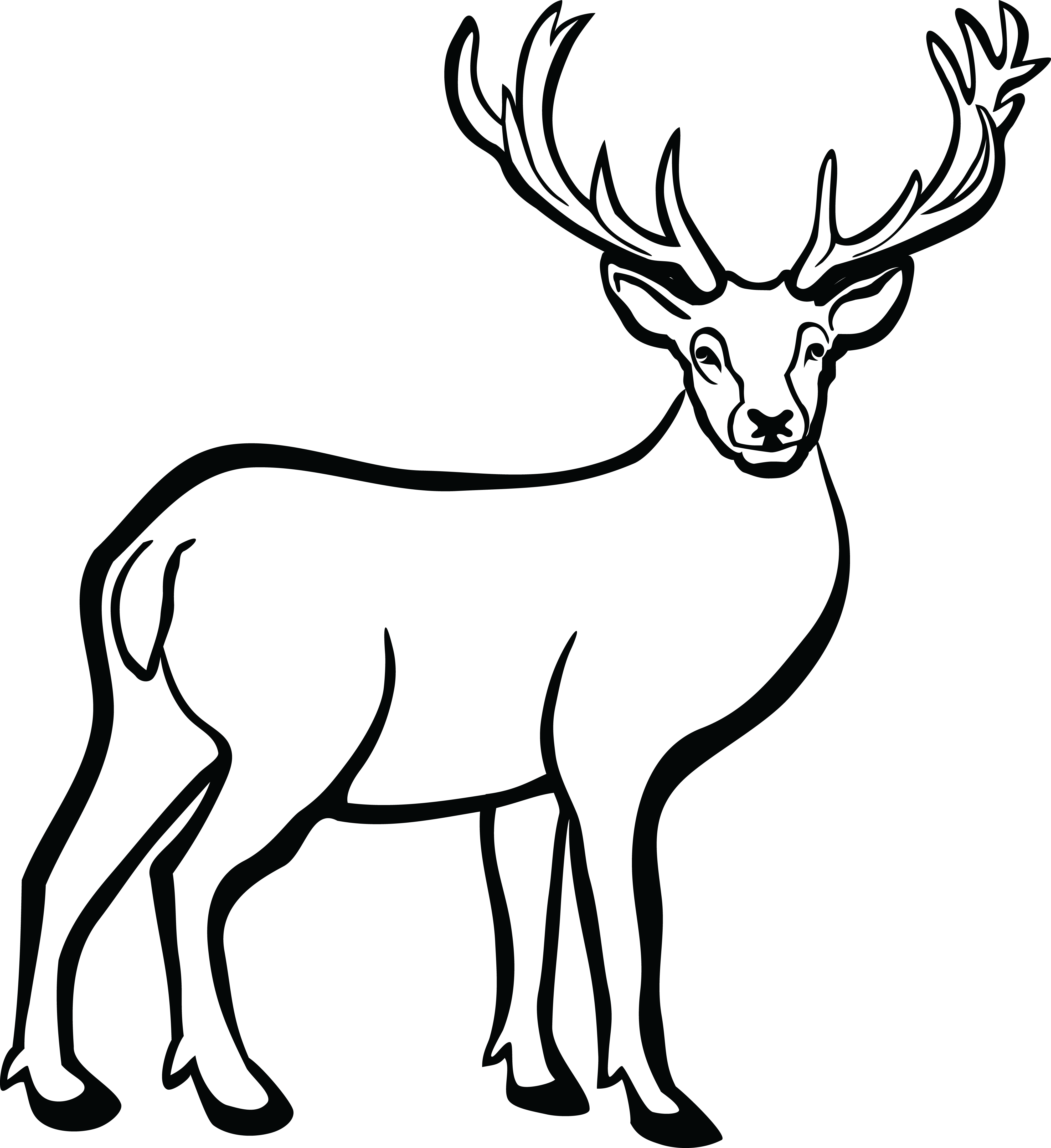 4000x4368 Free Clipart Of A buck deer