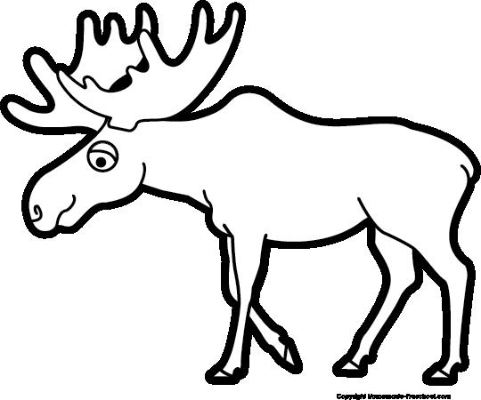 540x450 Top 79 Moose Clip Art