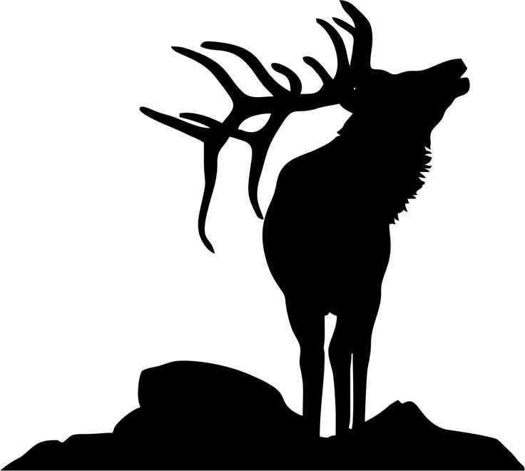 736x660 Elk Head Clip Art On Elk Head Clipart