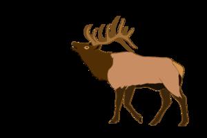 300x201 Elk Free Images