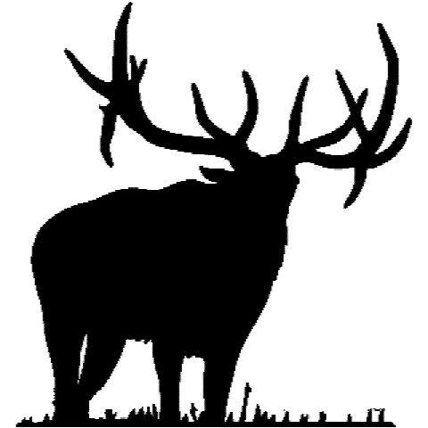480x480 Elk Clipart Silhouette