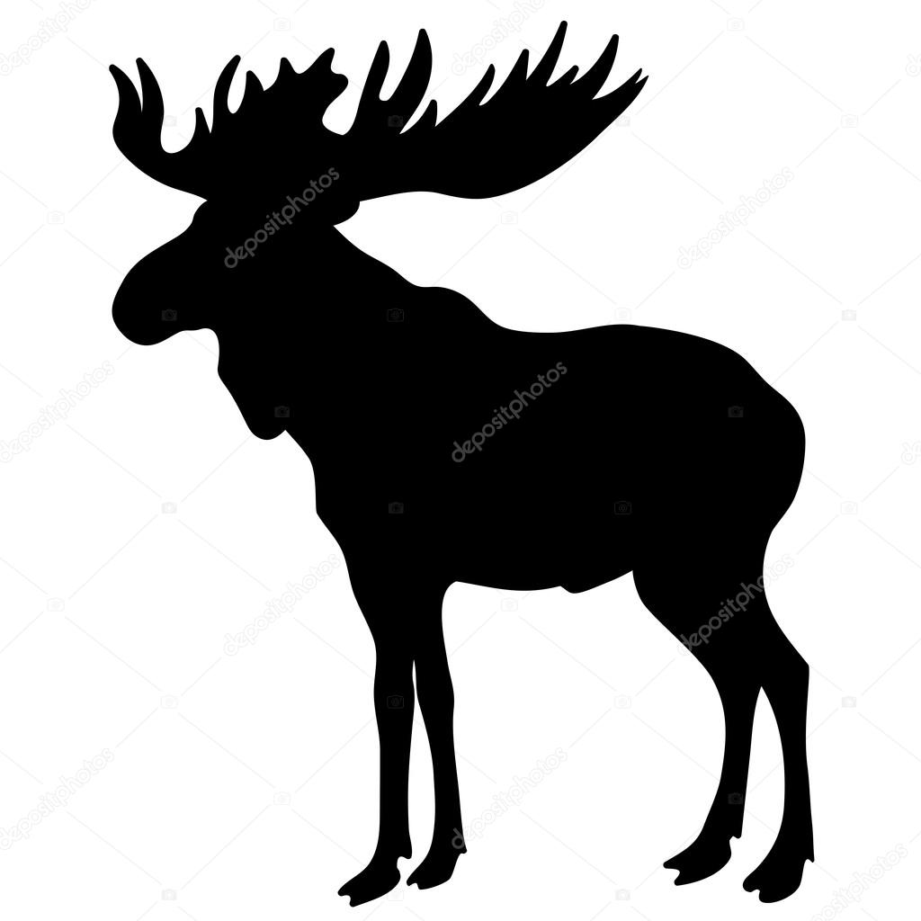 1024x1024 Moose Silhouette Stock Vectors, Royalty Free Moose Silhouette
