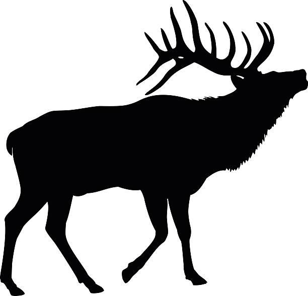 612x588 Peachy Design Ideas Elk Clip Art Head Silhouette Similar Galleries